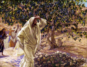 Cursing the Fig Tree