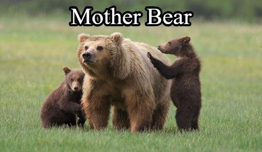 motherbeary